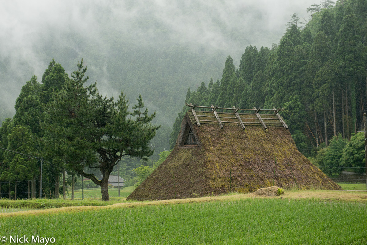 Japan,Kinki,Paddy,Residence,Roof,Thatch, photo