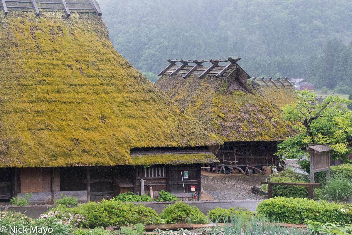 Japan,Kinki,Residence,Roof,Thatch, photo
