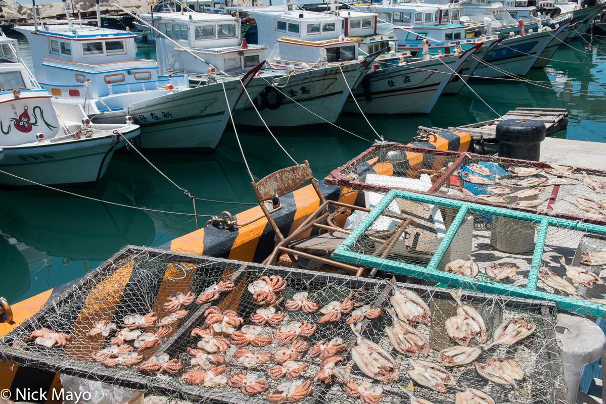 Boat,Fish Catch,Penghu,Taiwan, photo