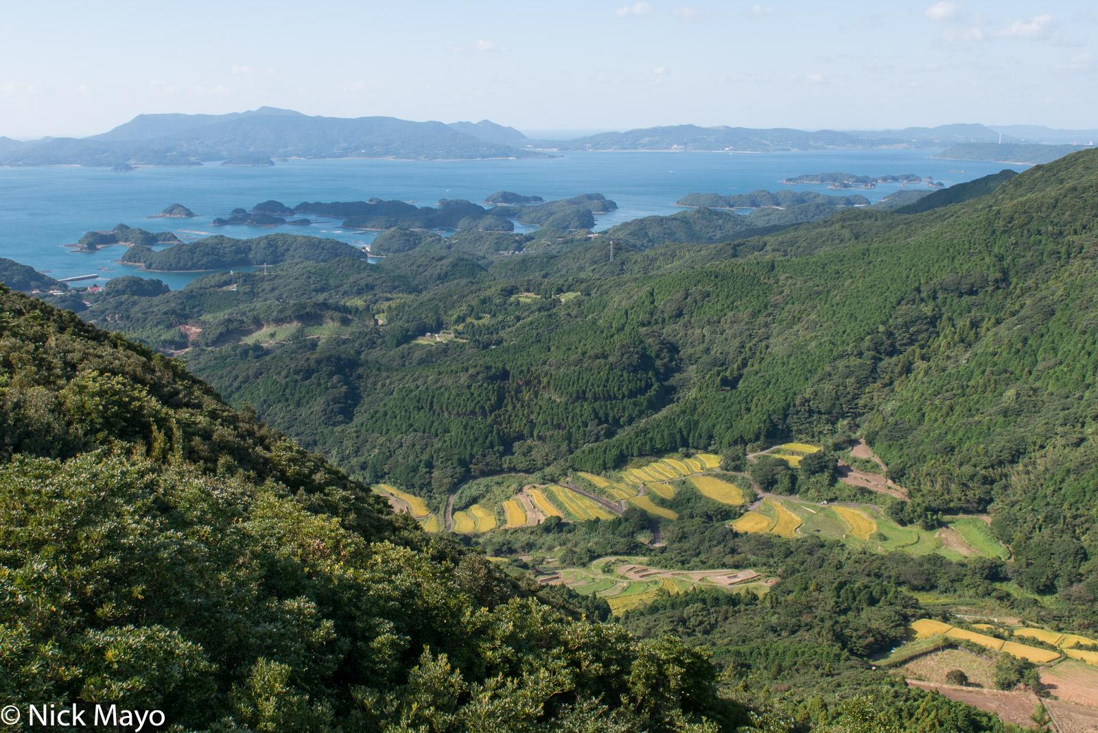 Japan,Kyushu,Paddy, photo