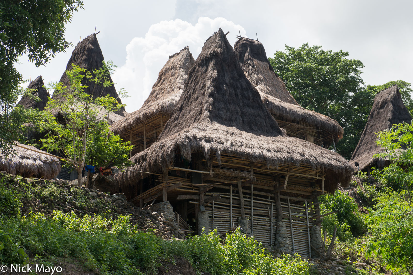 A hillside village of peaked roof houses thatched with alang grass in West Sumba Regency.