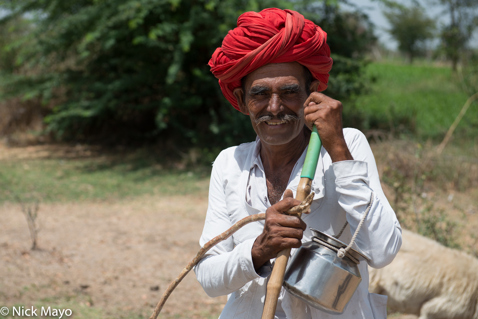Gujarat, India, Rabari, Turban, photo