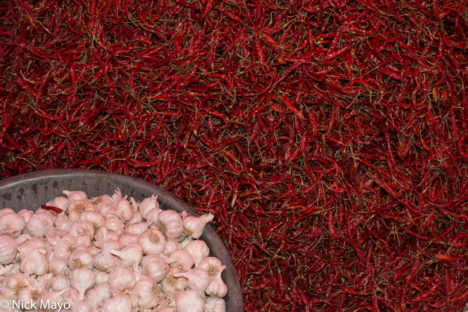 Chilli, Garlic, Gujarat, India, photo