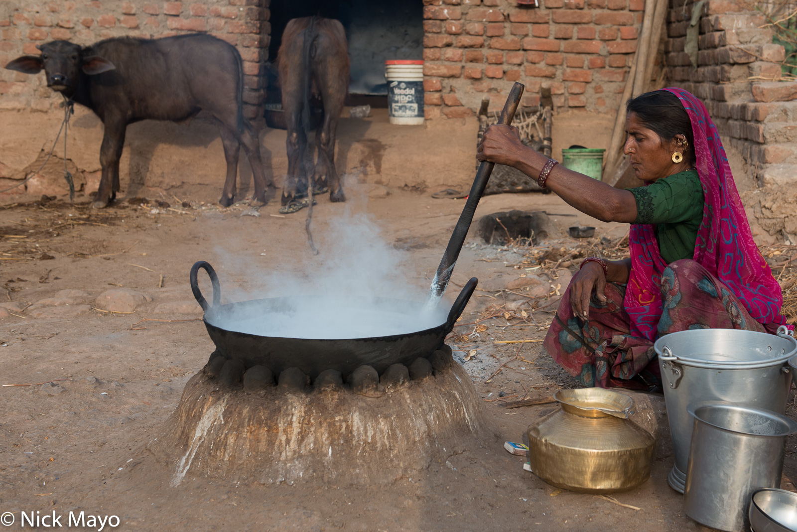 Cow, Gujarat, Hearth, India, Wok, photo