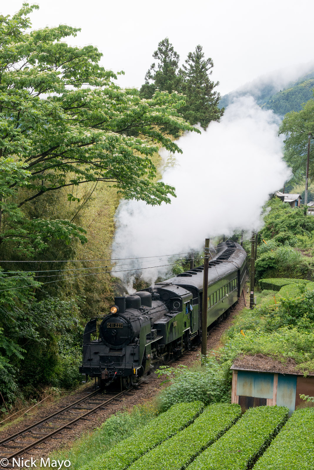 Japan, Kanto, Train, photo