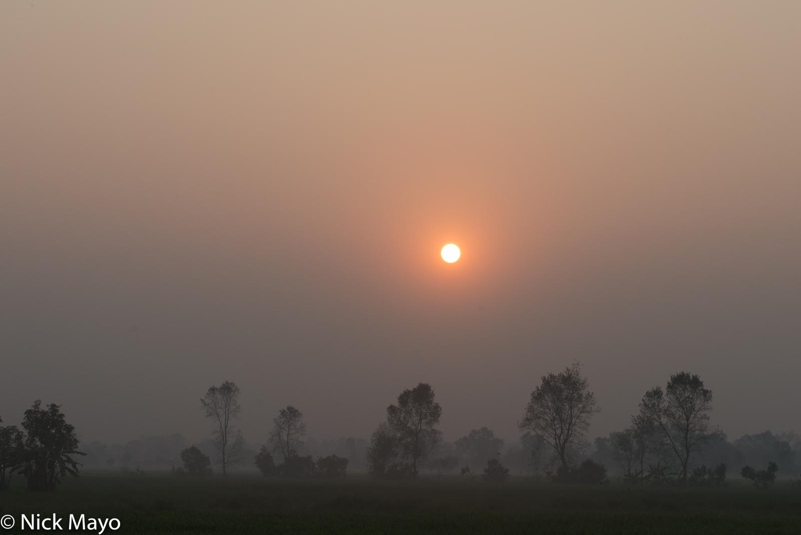 Nepal, Terai, photo
