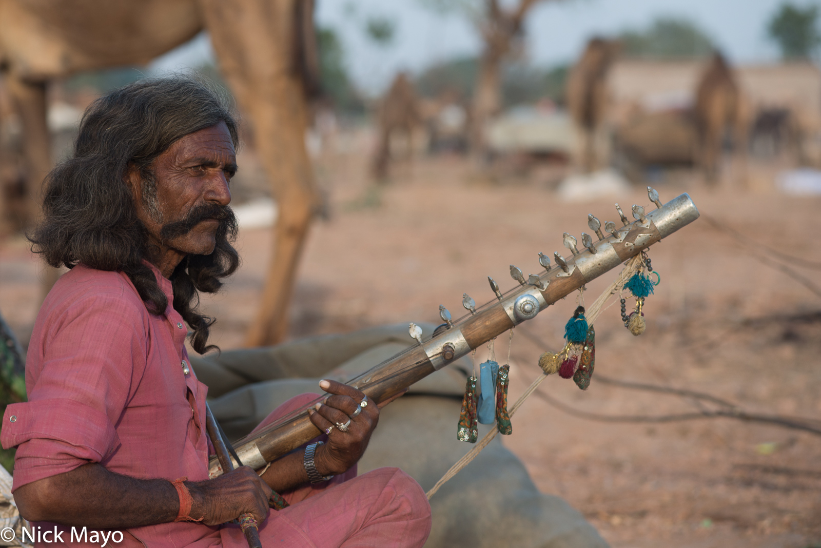 Festival, India, Rajasthan, Stringed Instrument, photo