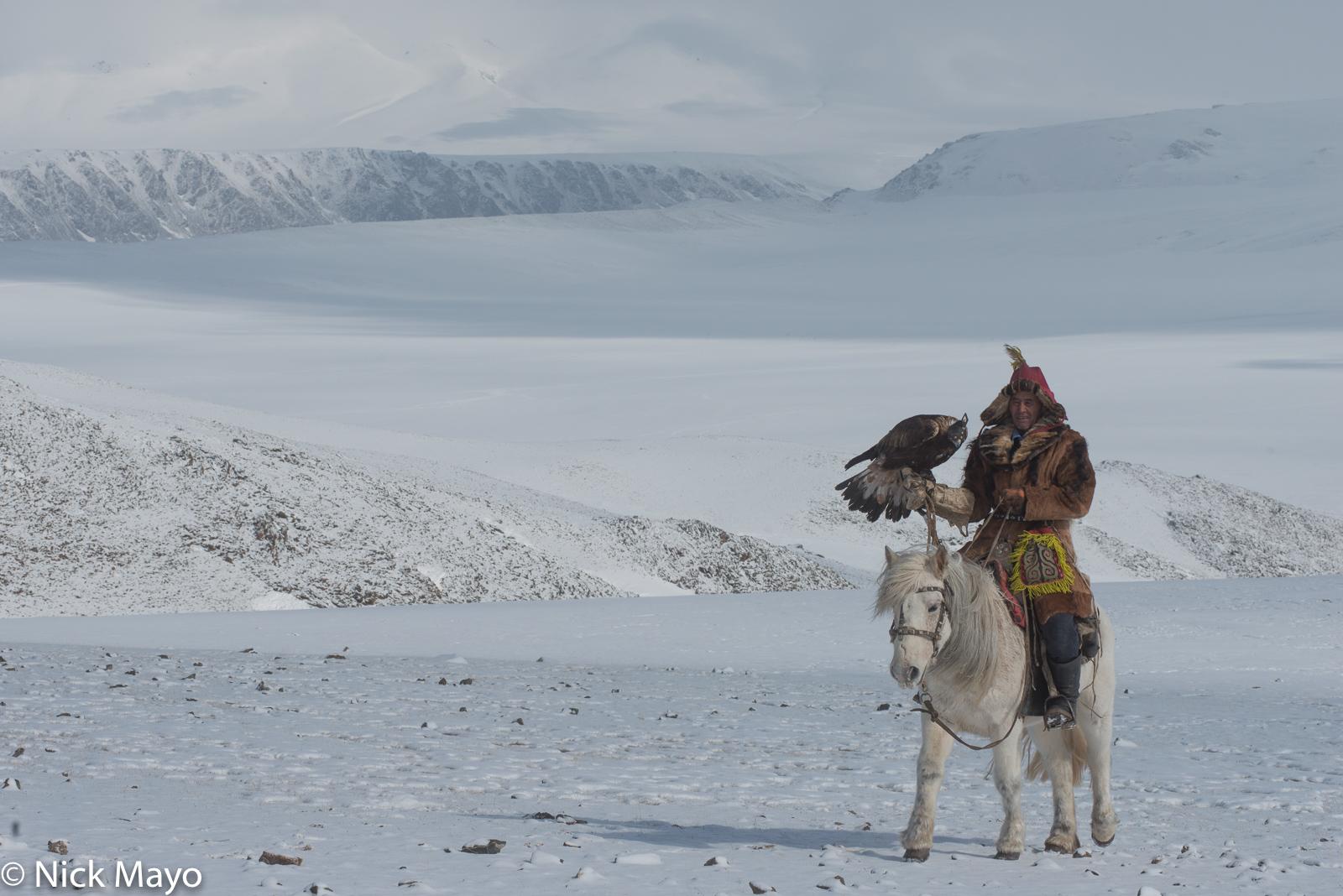 Bayan-Ölgii, Eagle, Horse, Hunting, Kazakh, Mongolia, photo