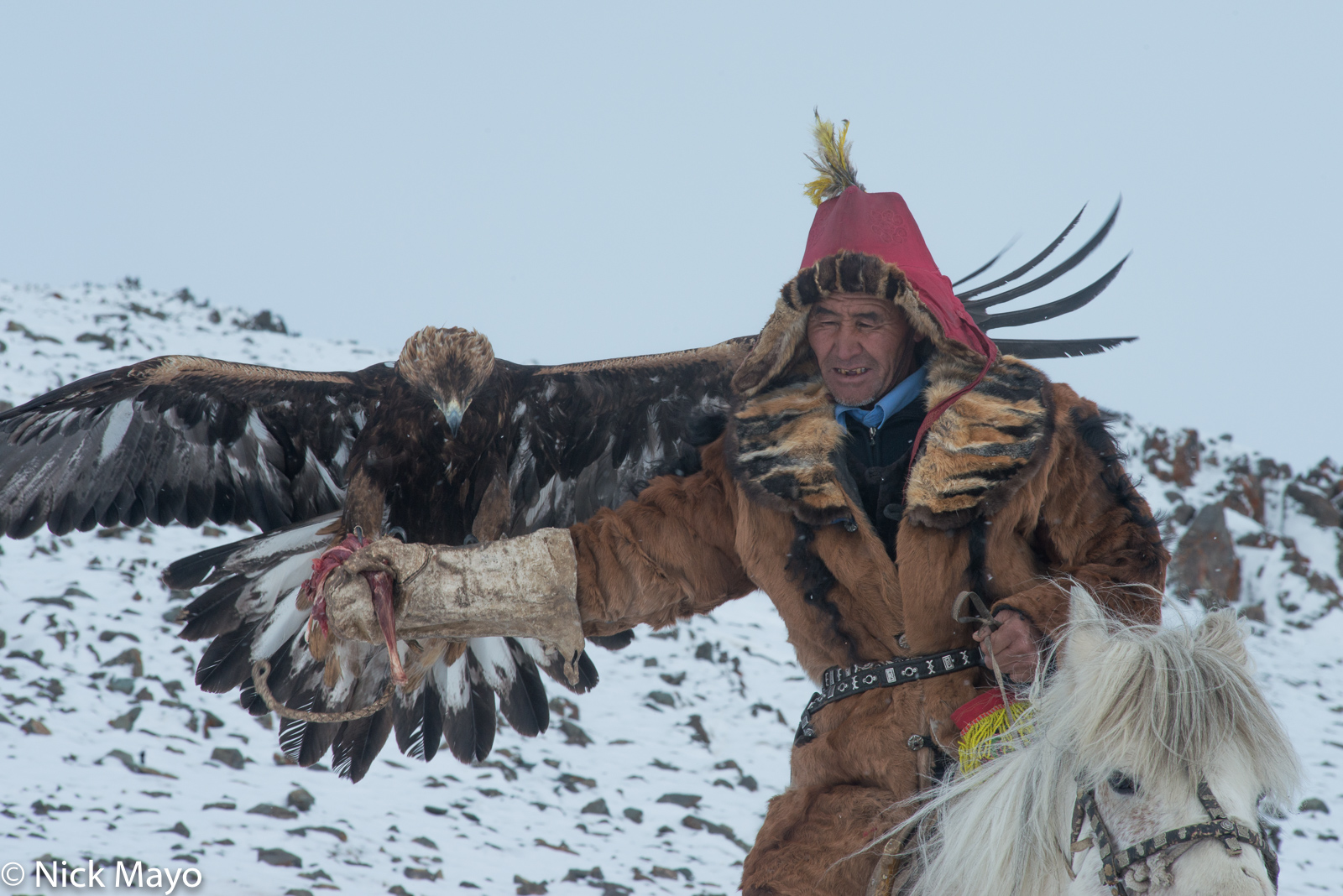 Bayan-Ölgii, Eagle, Horse, Hunting, Kazakh, Mongolia, photo
