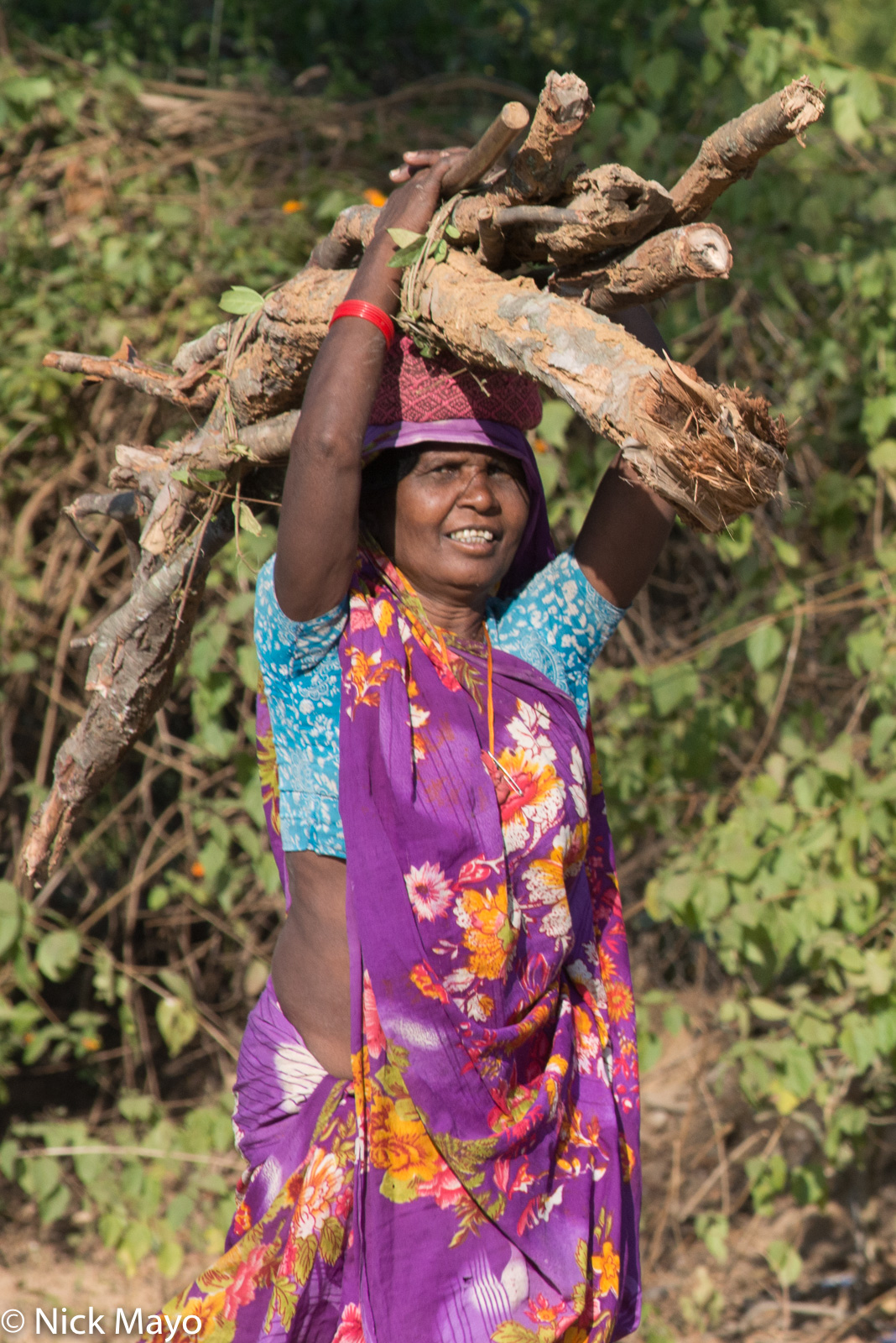 A woman carrying firewood home at Bandhavgarh.