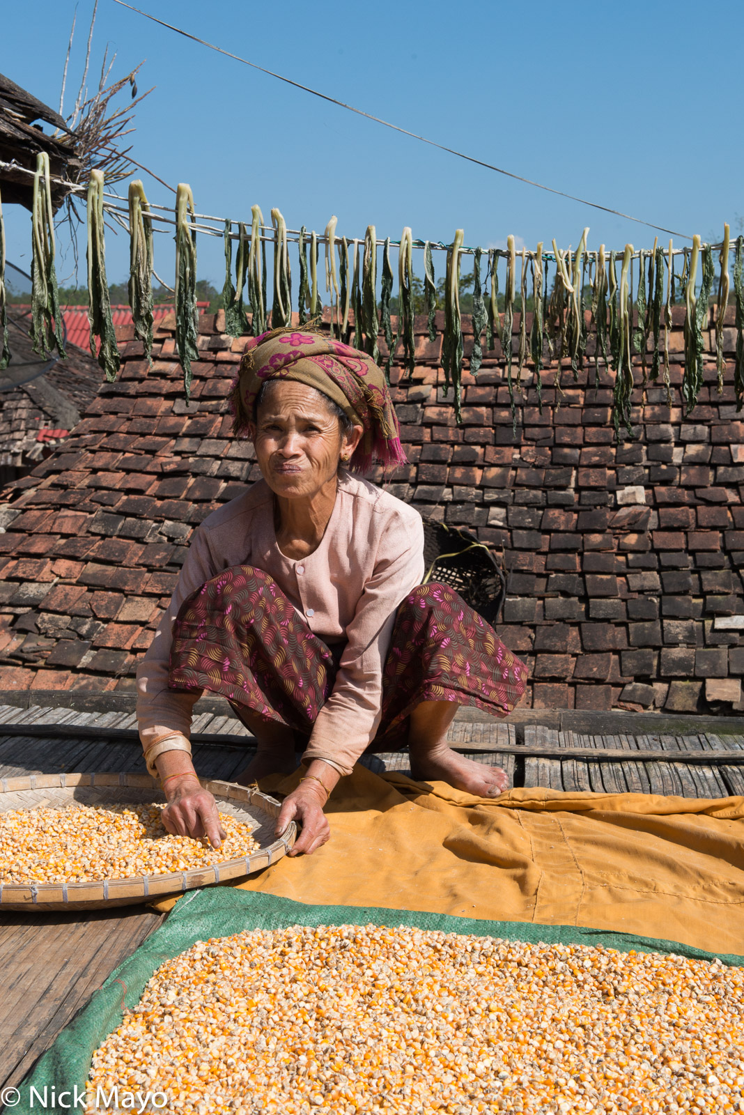 Burma, Corn, Shan, Shan State, Sorting, photo