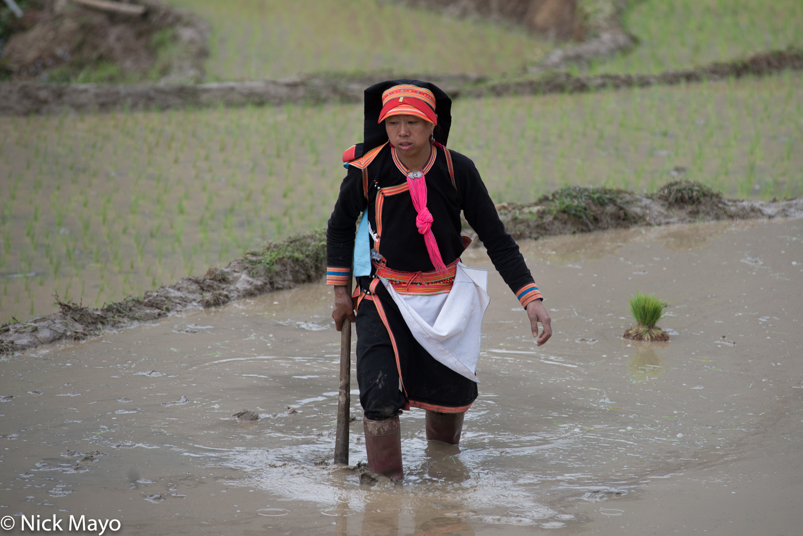 A Black Dao woman with her mattock in a field at Pocha.