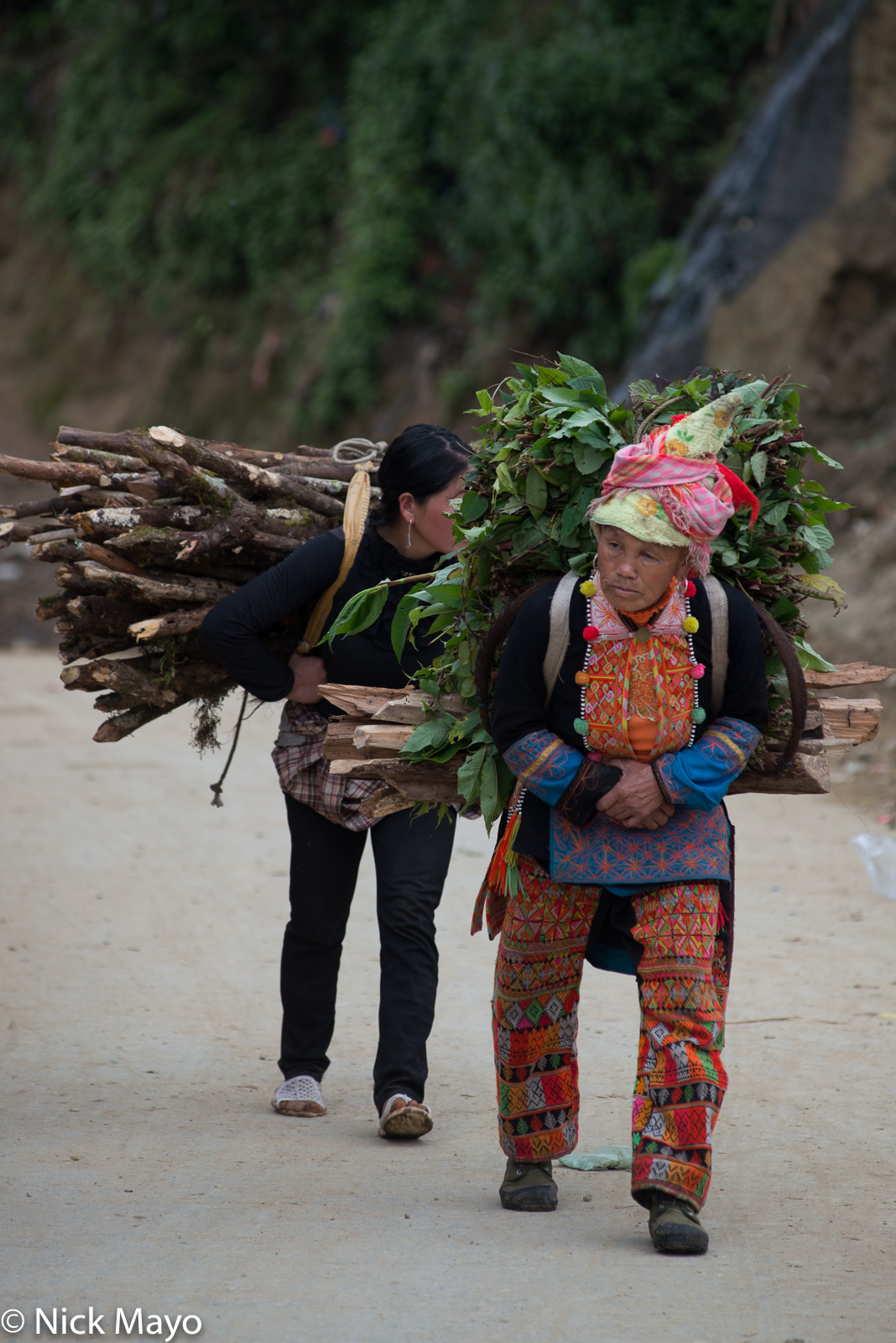 Firewood, Fodder, Lai Chau, Strap, Vietnam, Yao, photo
