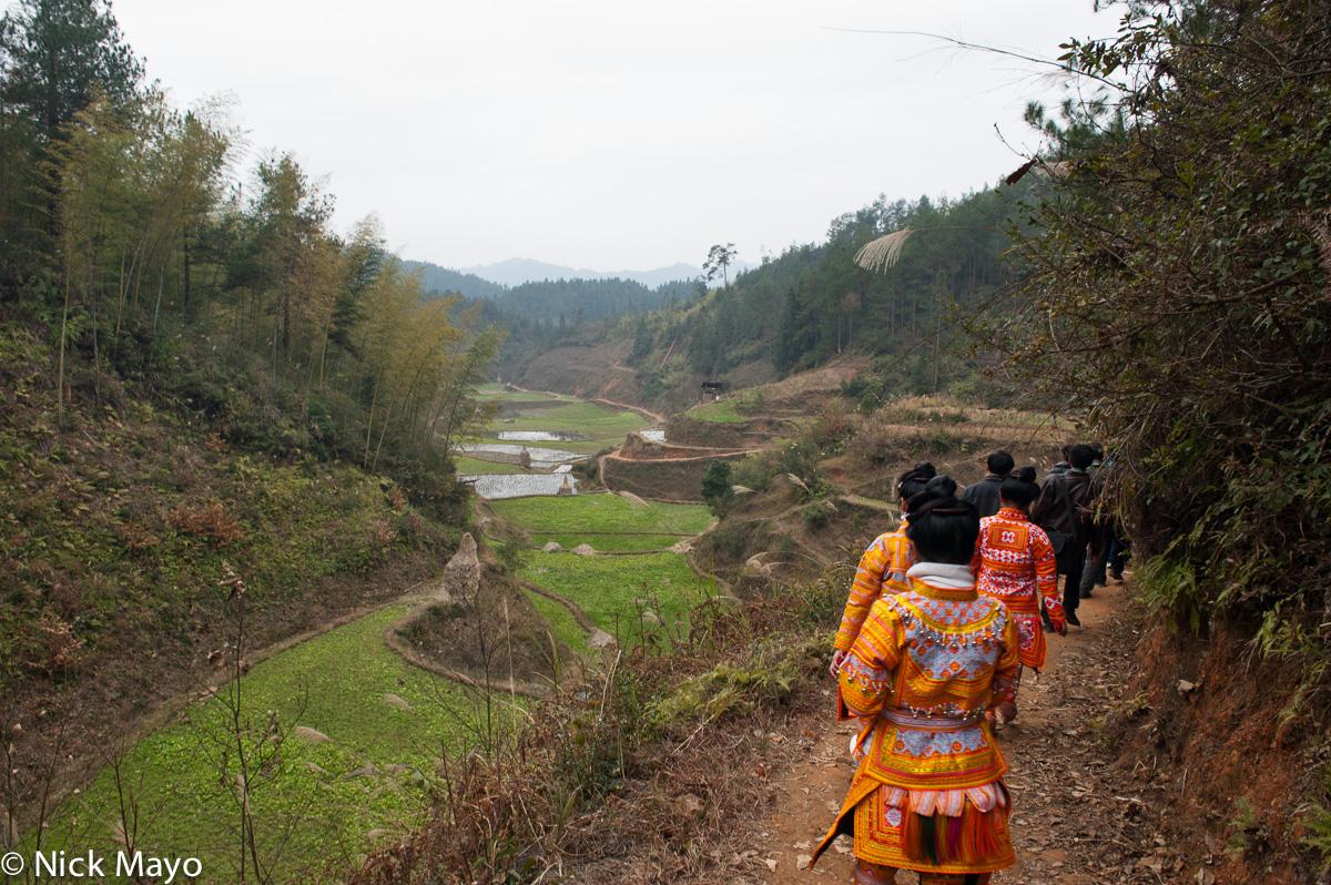 China,Column,Guizhou,Hair,Miao,Wedding, photo
