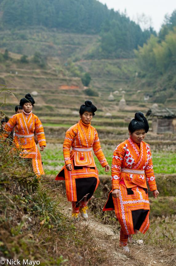 Apron,China,Column,Guizhou,Hair,Leggings,Miao,Wedding, photo