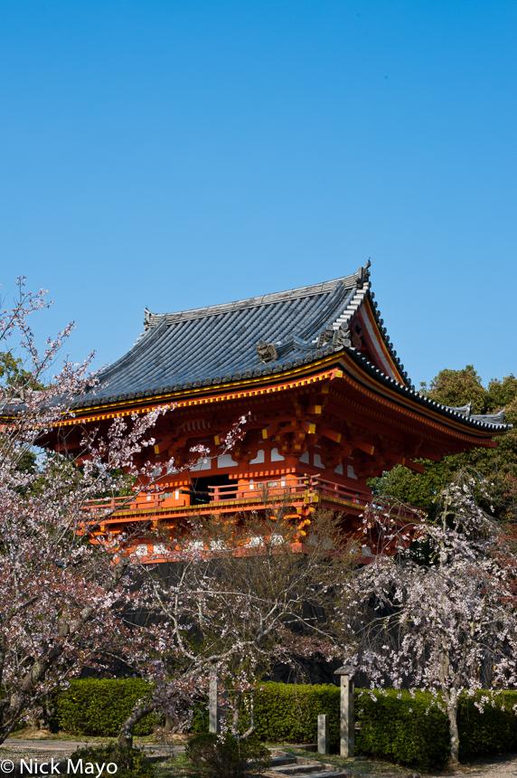 A temple in the Ninna-ji complex in Kyoto.