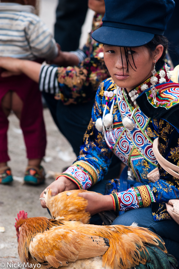 Chicken,China,Hat,Market,Sichuan,Yi, photo