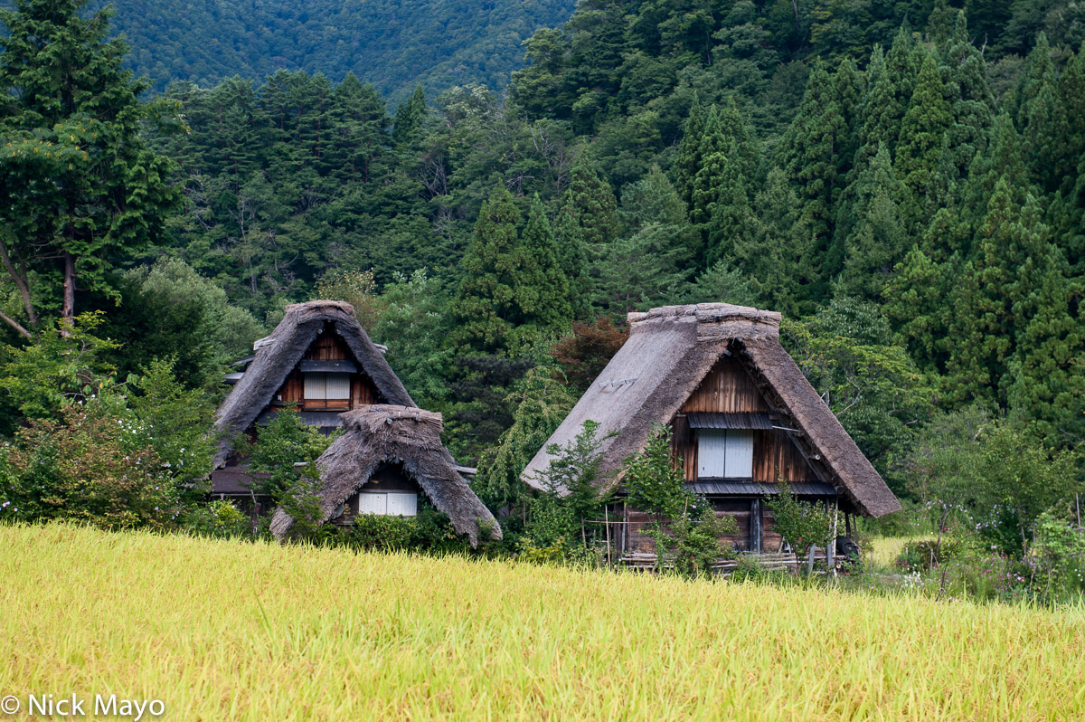 Chubu,Japan,Paddy,Residence,Roof,Thatch, photo