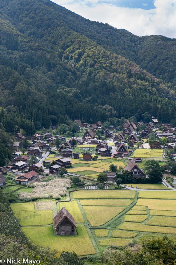 Chubu,Japan,Paddy,Thatch,Village, photo