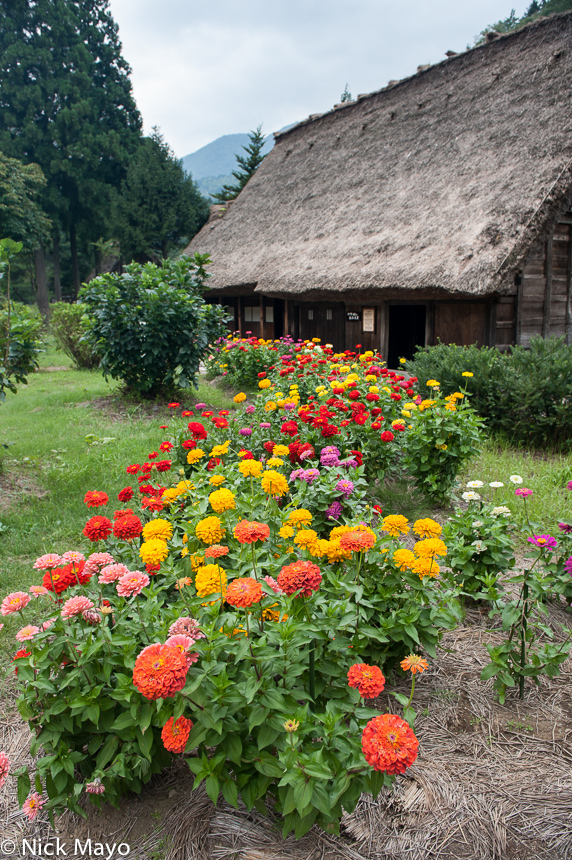 Chubu,Japan,Residence,Thatch, photo