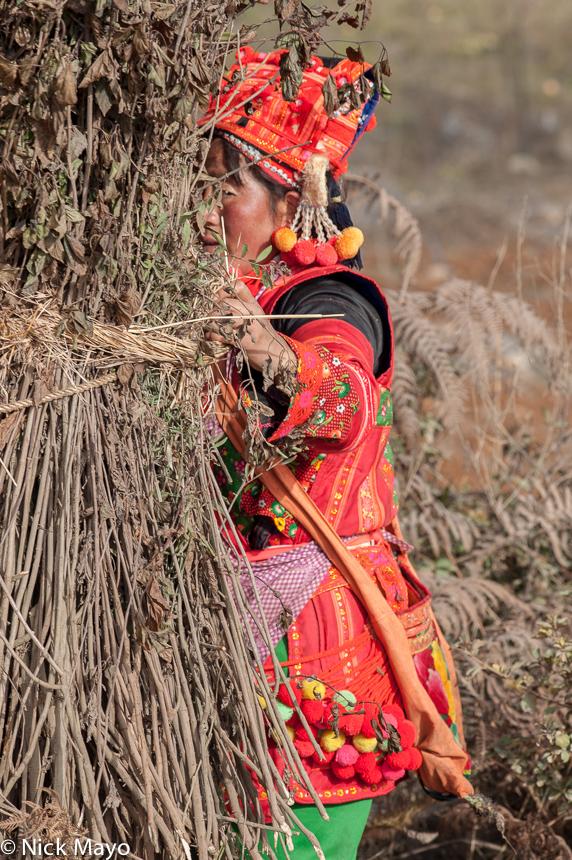 China,Grass,Yi,Yunnan, photo