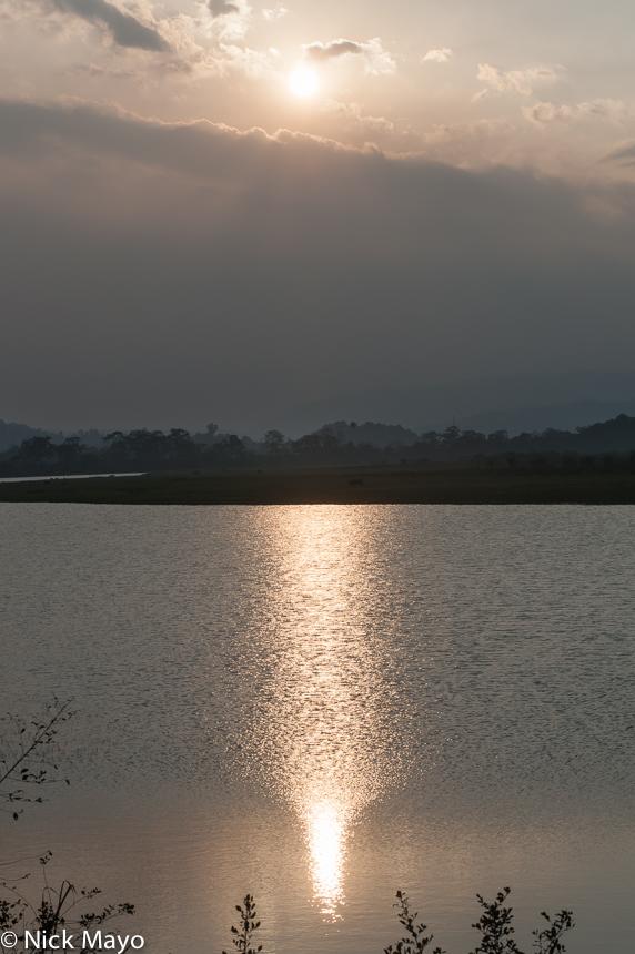 Assam,India, photo