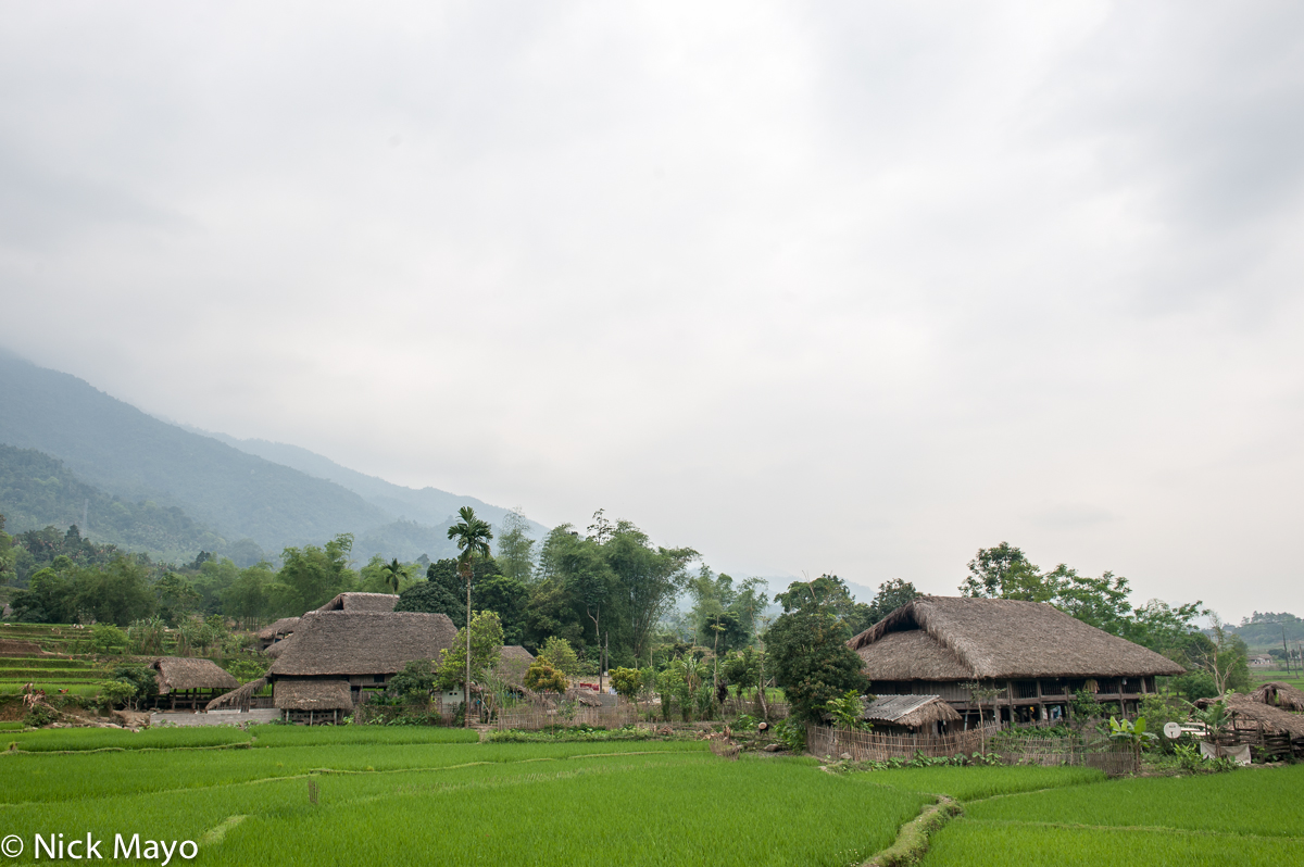 Ha Giang,Paddy,Thatch,Vietnam, photo
