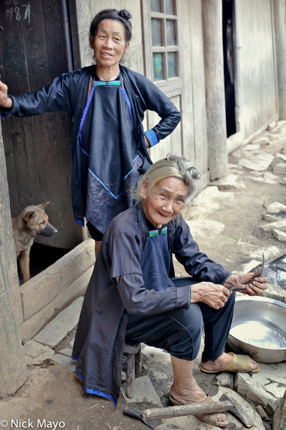 China,Dog,Dong,Guizhou,Hair, photo