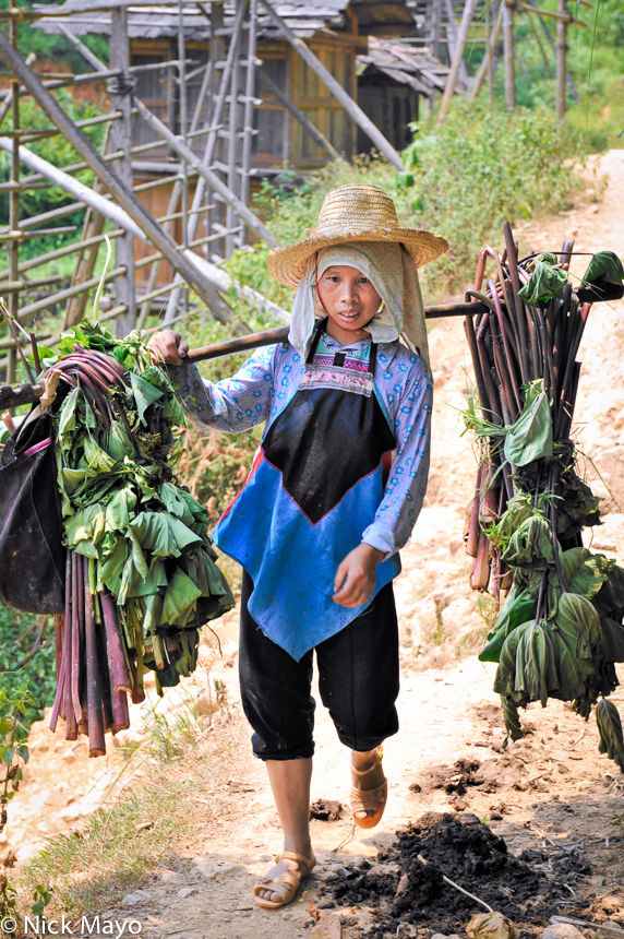 A Dong woman returning home to Wuei carrying fodder on a shoulder pole.