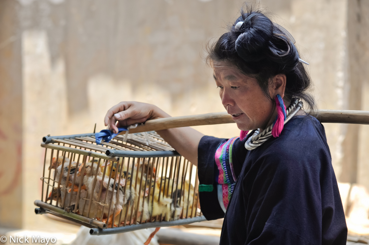 China,Duck,Earring,Guizhou,Hair,Market,Miao,Necklace,Shoulder Pole, photo