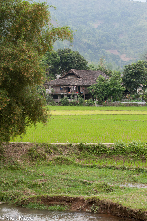 Ha Giang,Paddy,Residence,Vietnam, photo