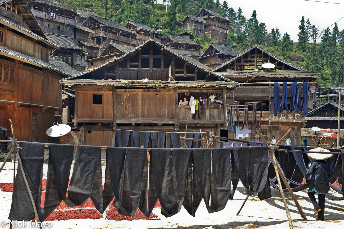 Freshly indigo dyed cloth drying in the Dong village of Yintan.
