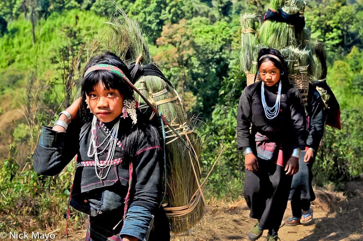 Burma,Earring,Eng,Grass,Shan State,Strap, photo