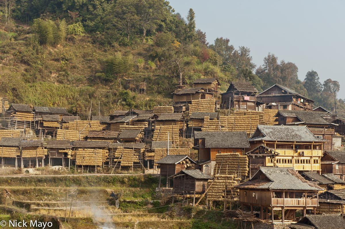China,Drying,Drying Rack,Guizhou,Paddy,Village, photo