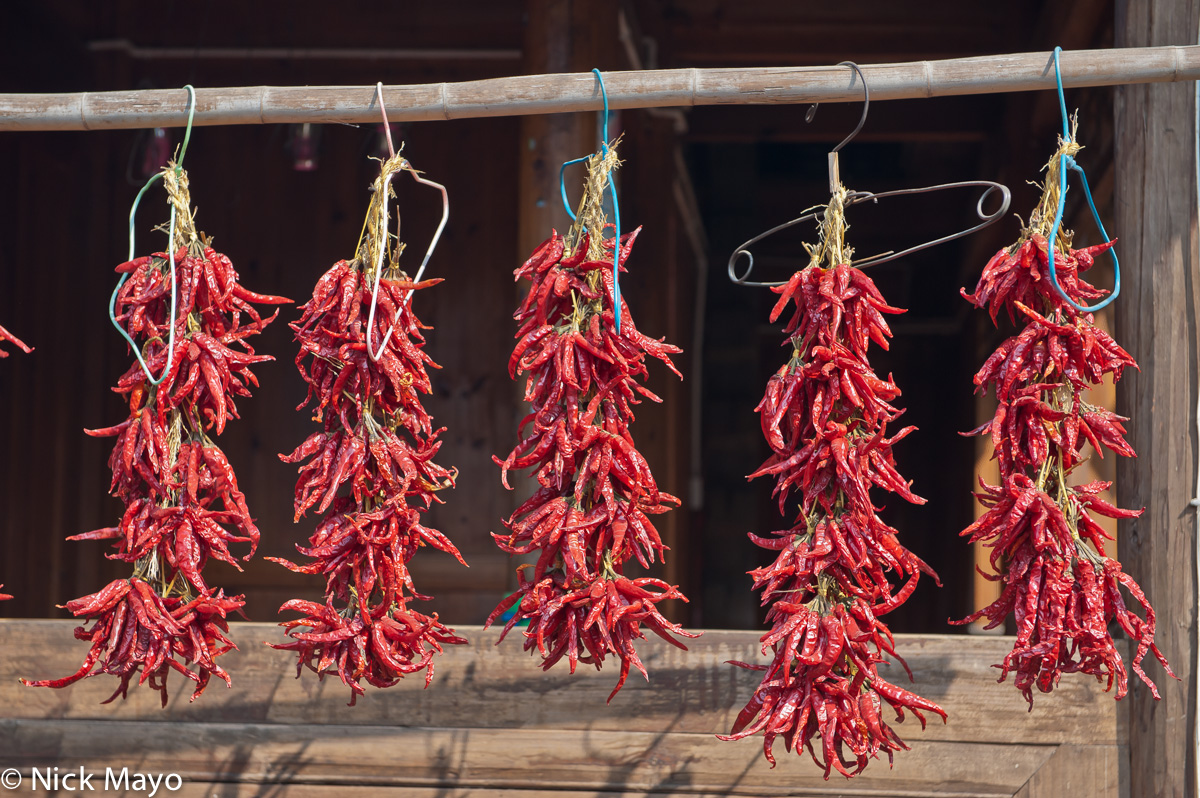 Chilli,China,Guizhou, photo