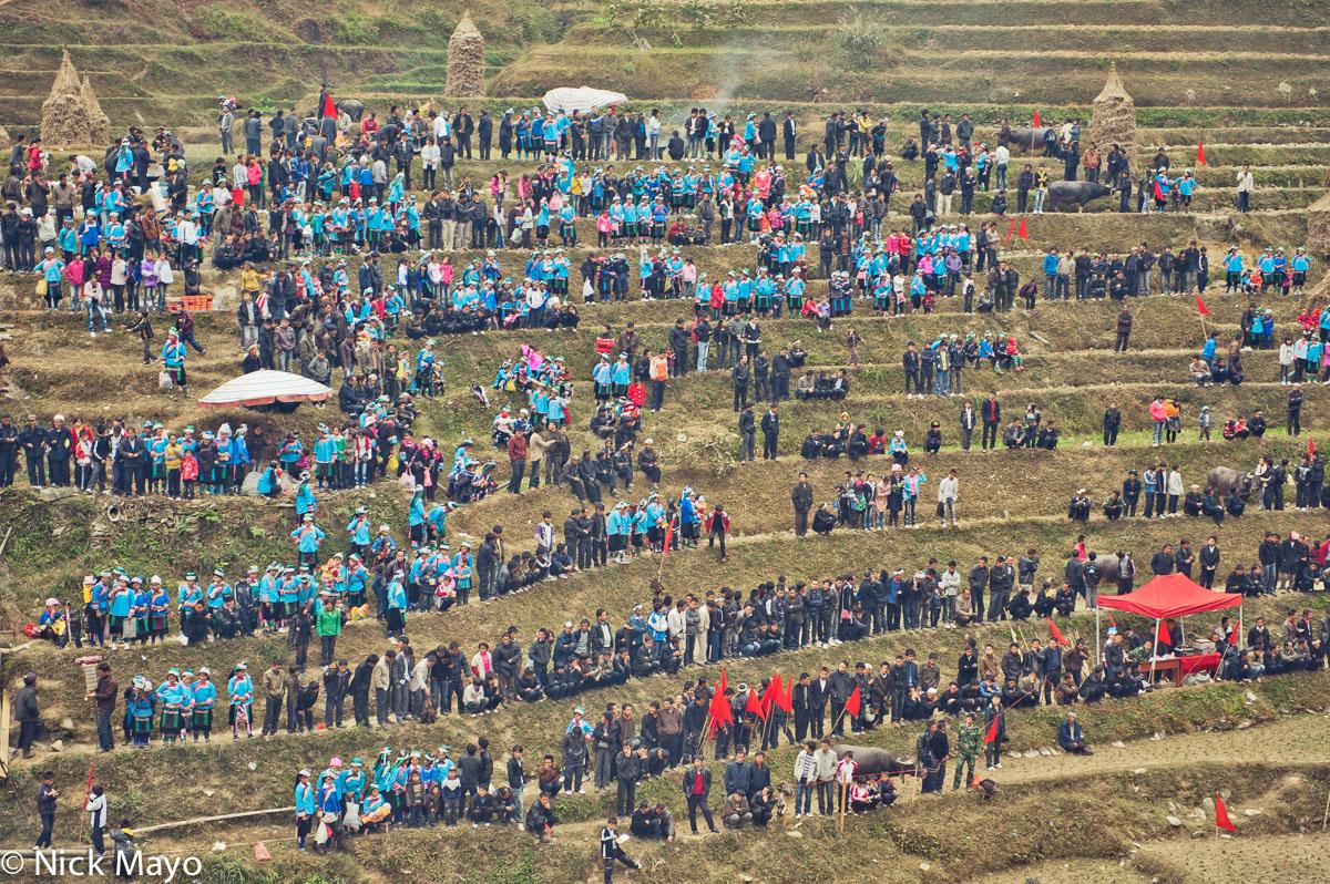 Bullfight,China,Dong,Guizhou,Miao, photo