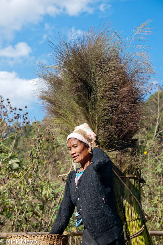 A Bulang woman using a backstrap basket to carry feathered grass home to Bulangshan.