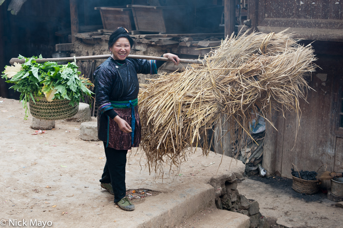 Apron,China,Dong,Fodder,Guizhou,Shoulder Pole,Straw, photo