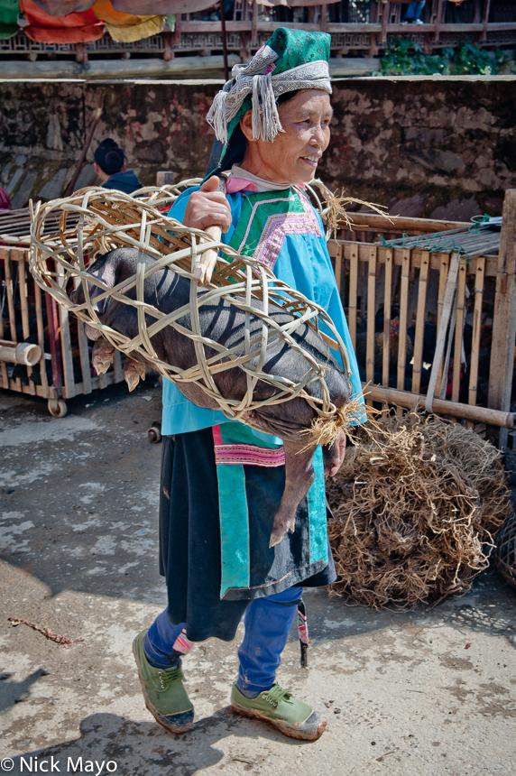 China,Guizhou,Hat,Market,Miao,Pig,Shoulder Pole, photo