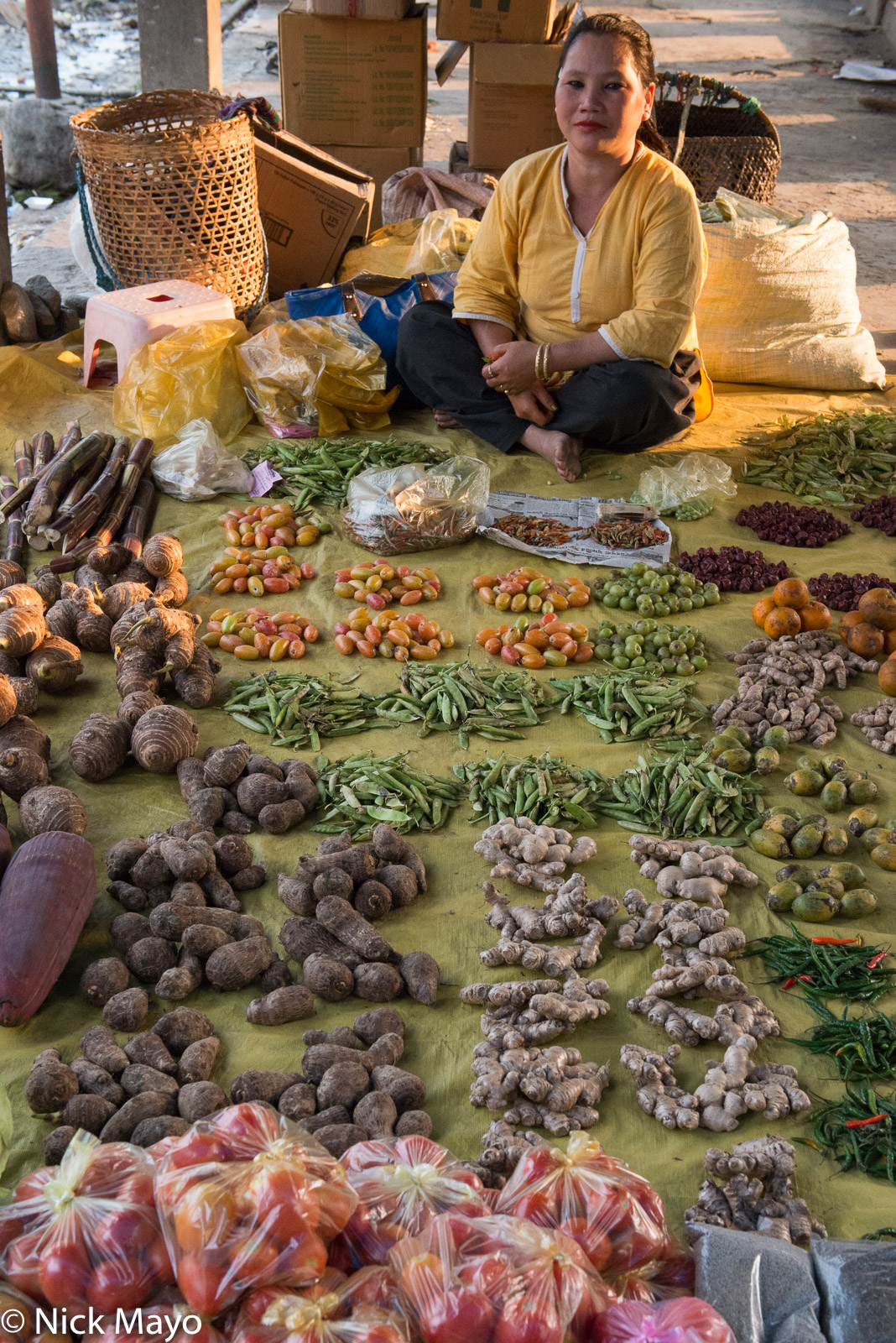 An Adi woman selling vegetables in the market at Roing.
