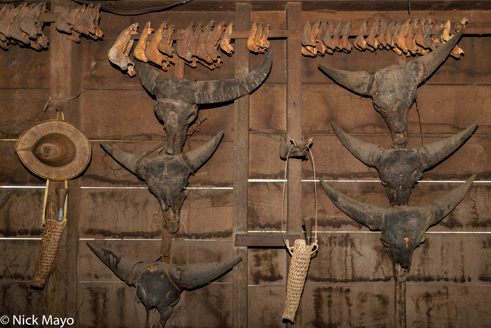 Mithun skulls hung on the wall of an Idi Mishmi house at Aohali.