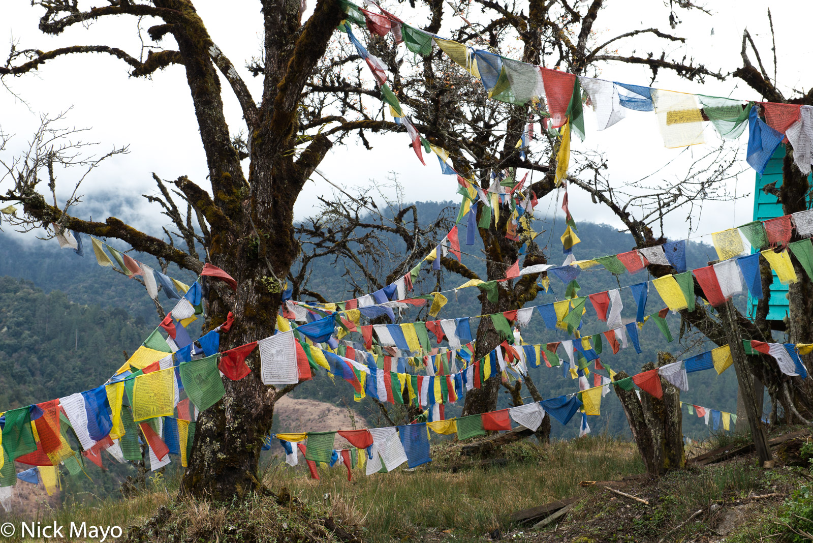 Arunachal Pradesh, India, Prayer Flag, photo