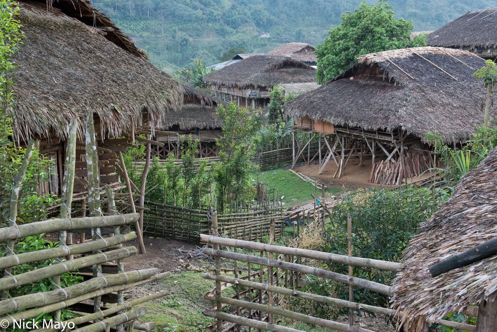Houses in the thatched Galo village of Paya.