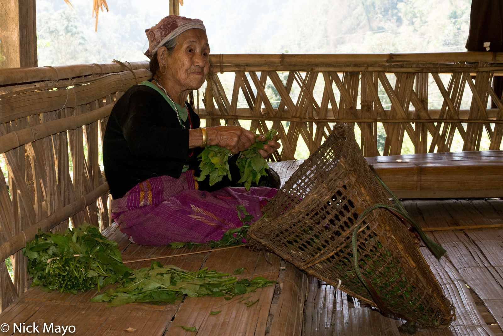 Arunachal Pradesh, India, Tagin, Wicker Basket, photo