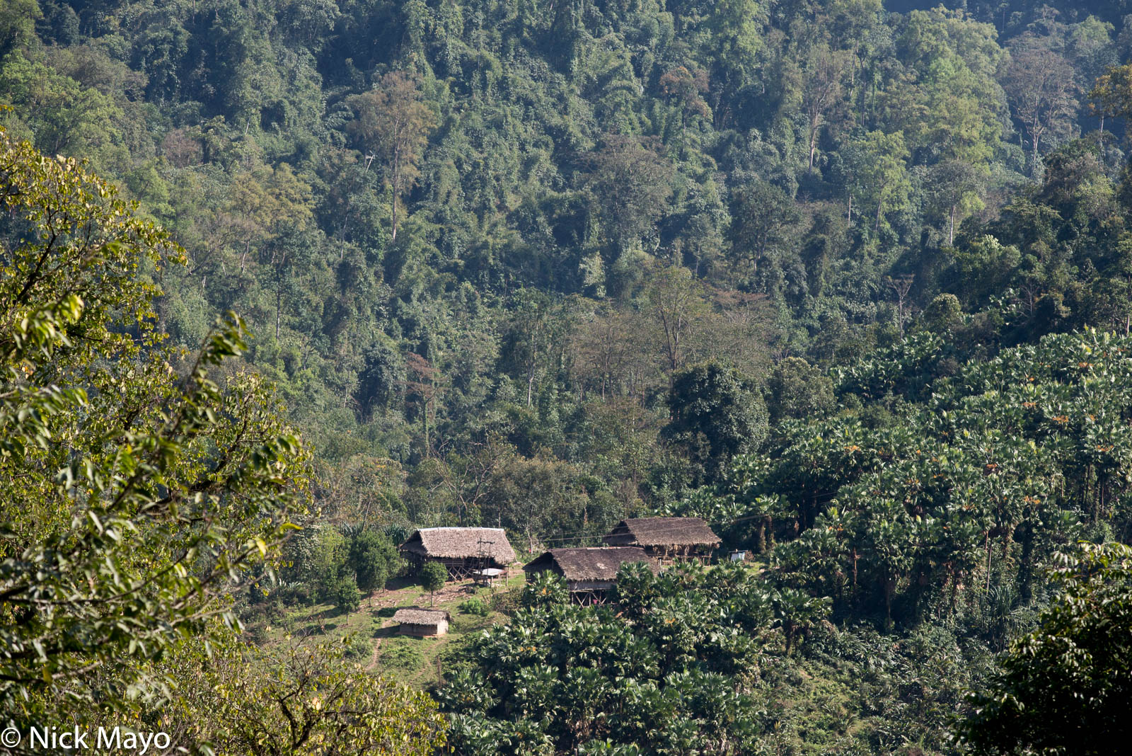 Arunachal Pradesh, India, Residence, Thatch, photo