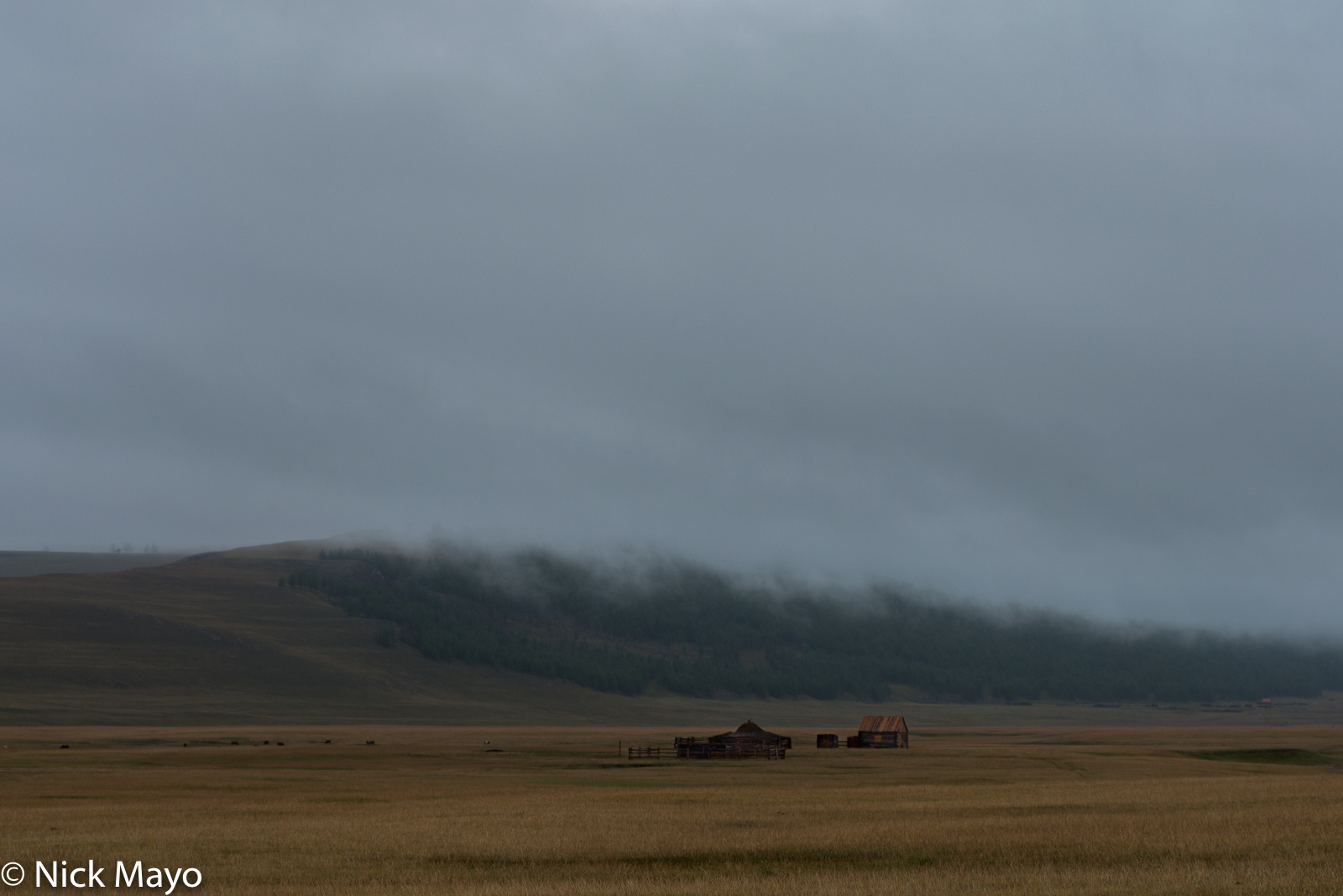A lonely house used in winter by herders in Renchinlkhumbe sum.