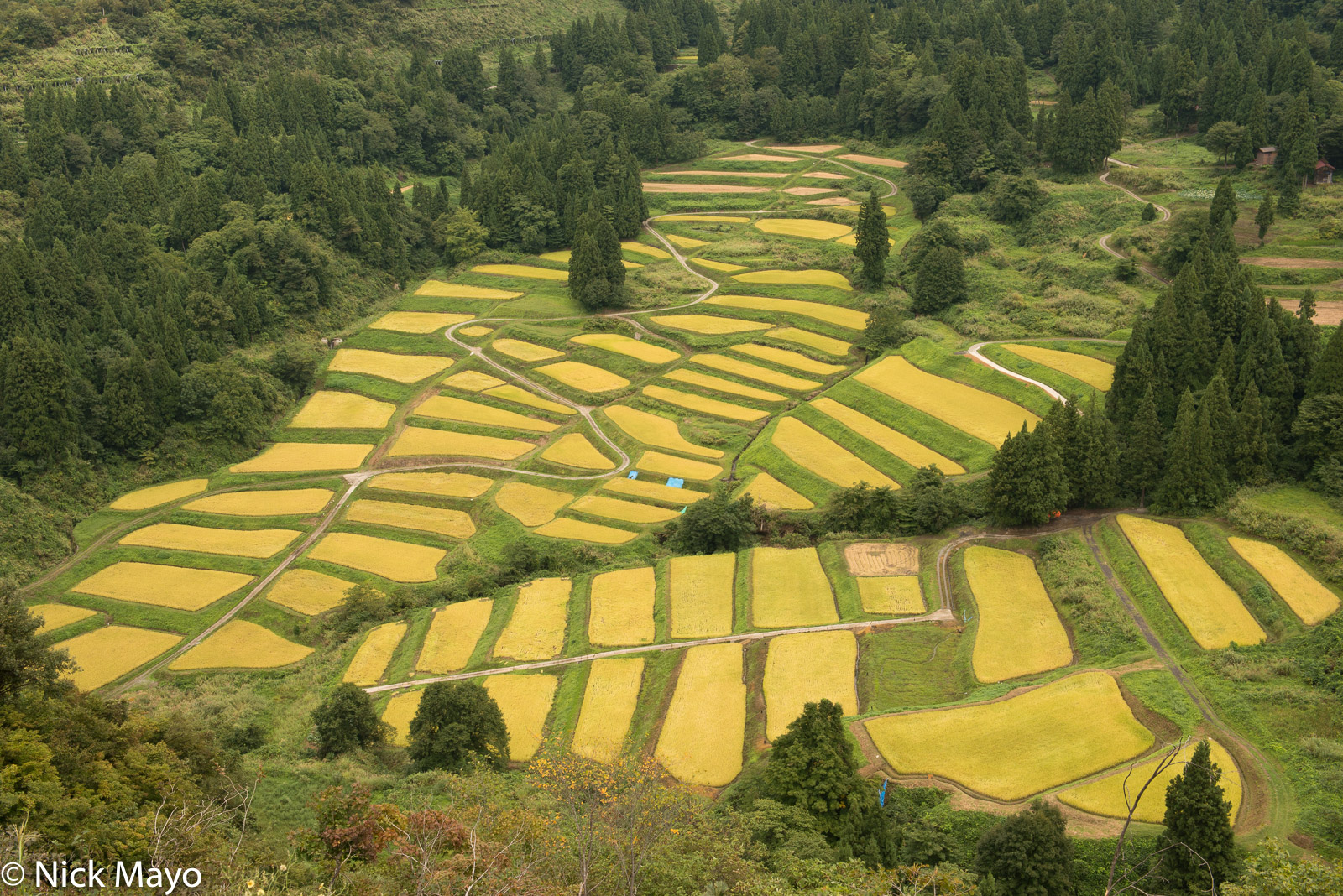 The terraced paddy rice fields at Keiji.