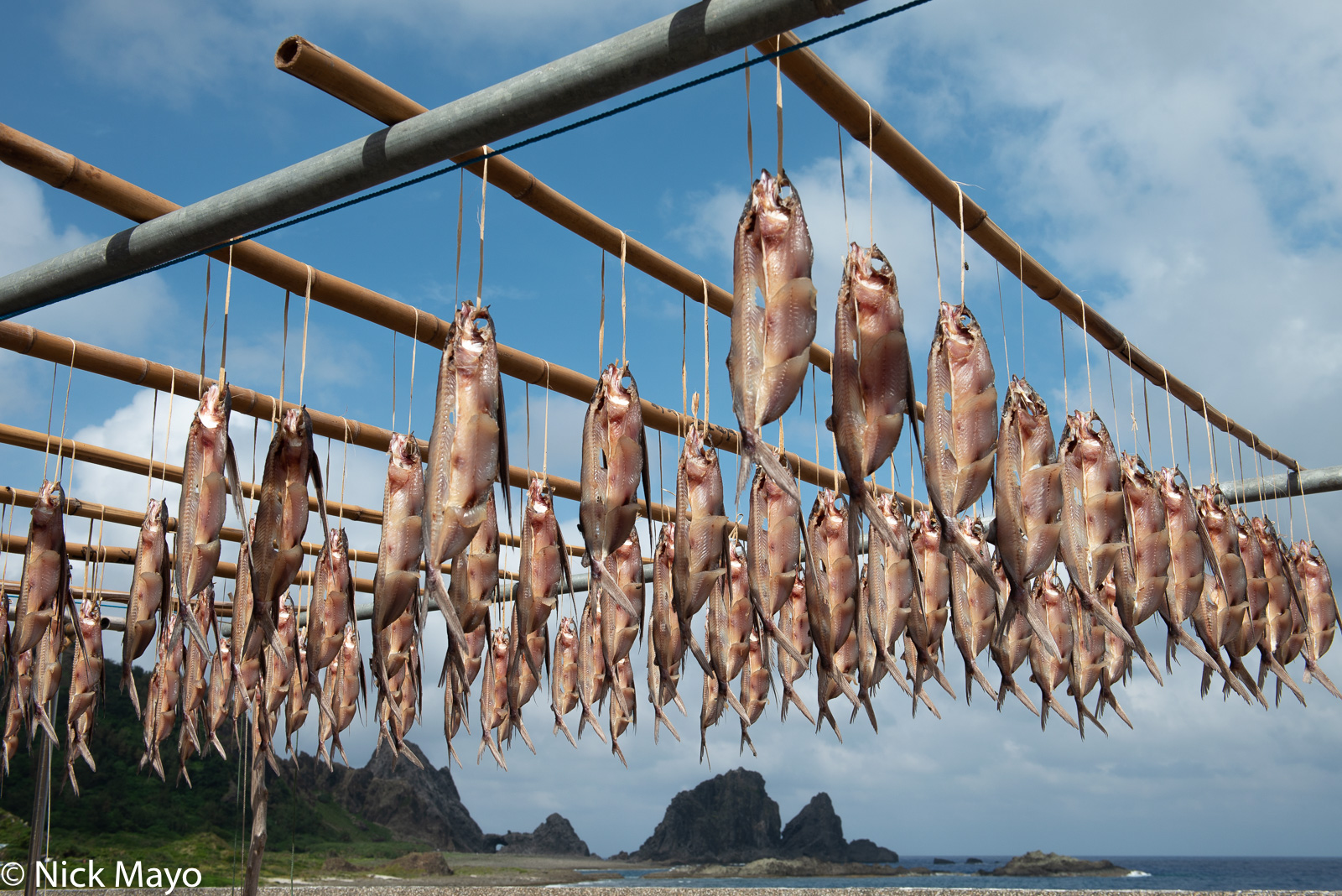 Flying fish catch hung to dry on Lanyu.