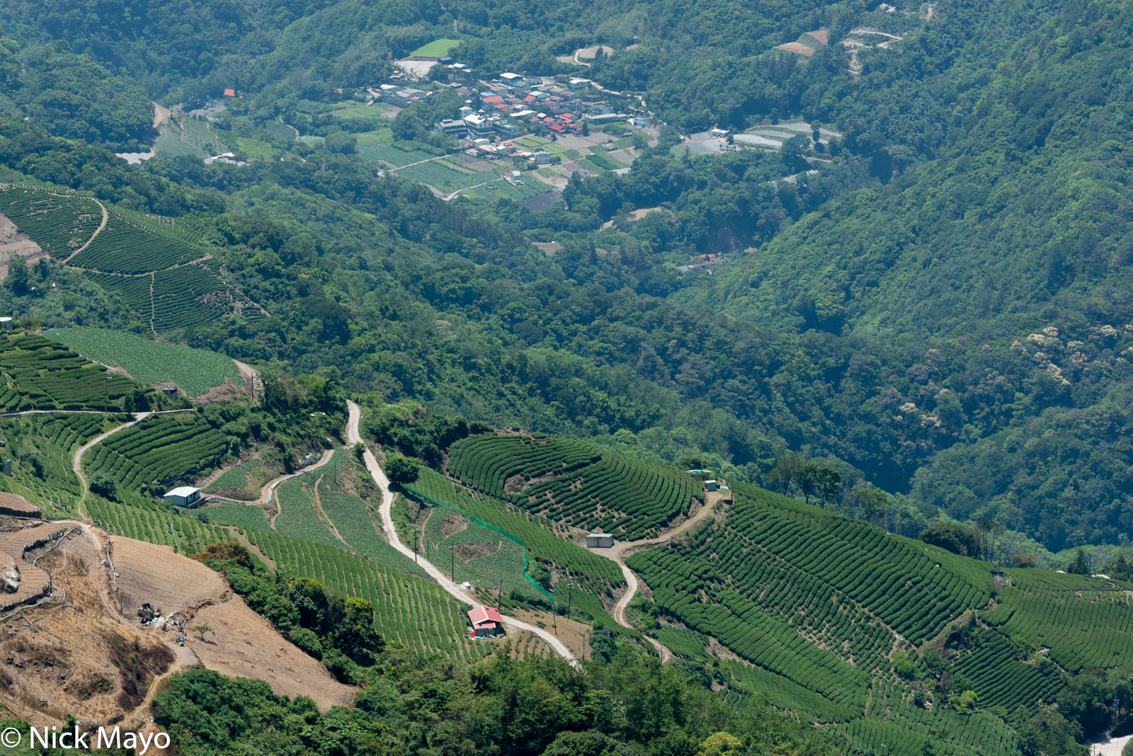 High altitude vegetable and tea fields above Cuilan village as viewed from Maliguan.