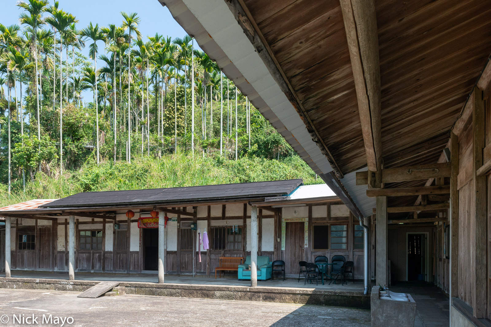 A wooden farmhouse below betel trees at Ruili.